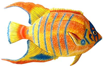 Metal Fish Wall Decor tropical fish home decor - hand painted metal queen angelfish