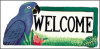 "Parrot Welcome Sign - Painted Metal Blue Hyacinth - Tropical Decor - 8"" x 16"""
