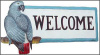 "Painted Metal African Grey Welcome Sign - Tropical Home Decor - 8"" x 16"""