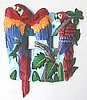 Switchplate - Hand Painted Metal Parrot Light Switch Cover - 2 Holes