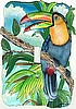 Toucan Painted Metal Light Switch Plate Cover - Tropical Decor