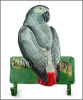 "African Grey Parrot Wall Hook - Metal Hook -  Hand Painted Metal Tropical Decor - 8 1/2"" x 11"""